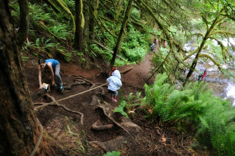 Alsea and Green Peak Falls Hike Up @ Mt. Hope Chronicles