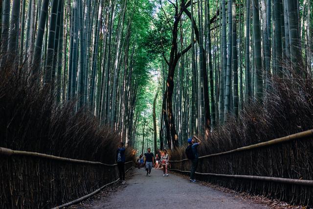 Kyoto_Arashiyama_15