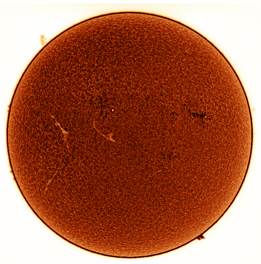 AR2662 (left) and AR2663 (right)