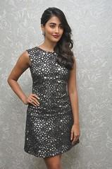 Pooja Hegde Latest Stills