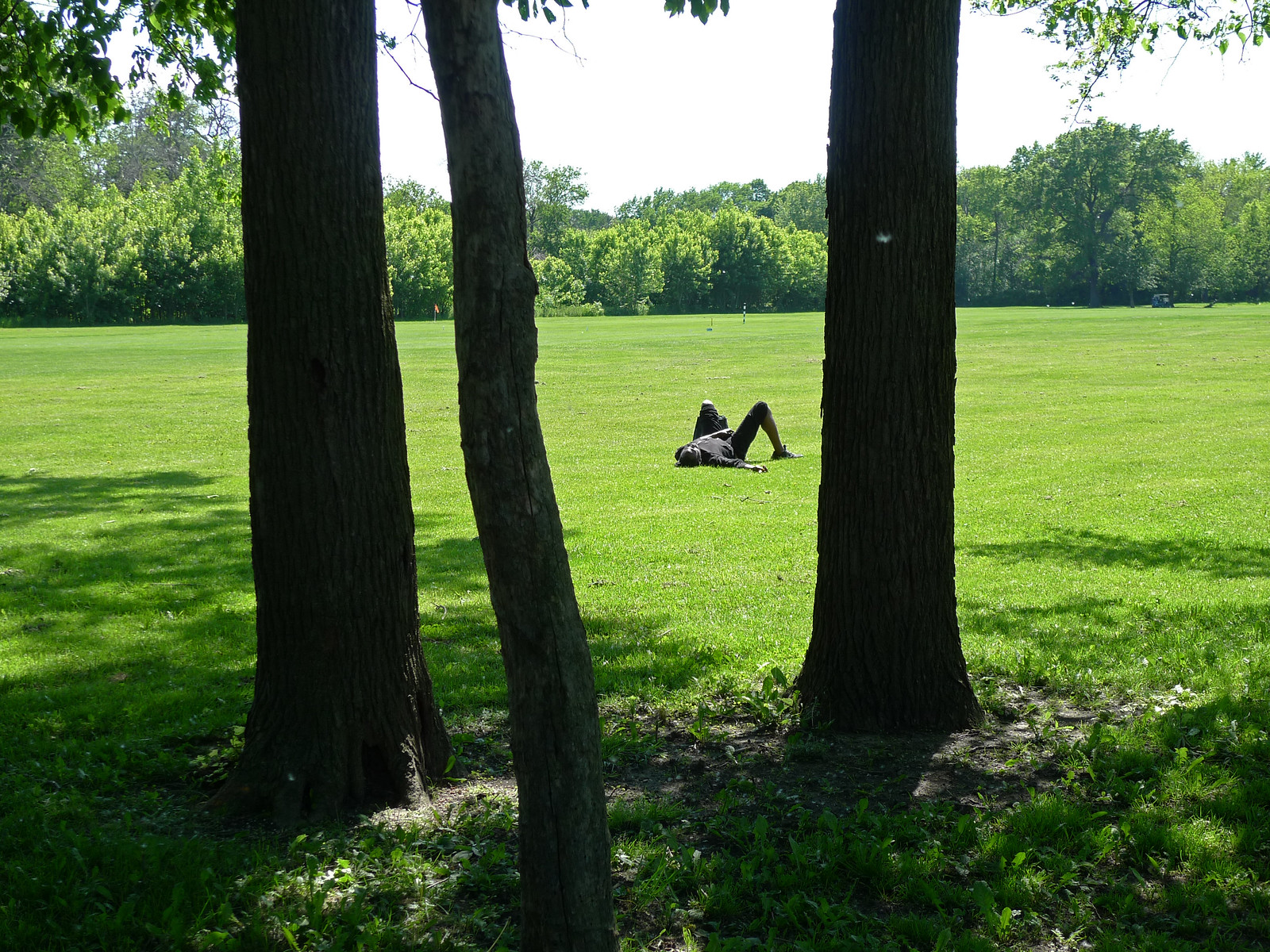 napping in the rough (Columbus Park Golf Course) | by find myself a city (1001 Afternoons in Chicago)
