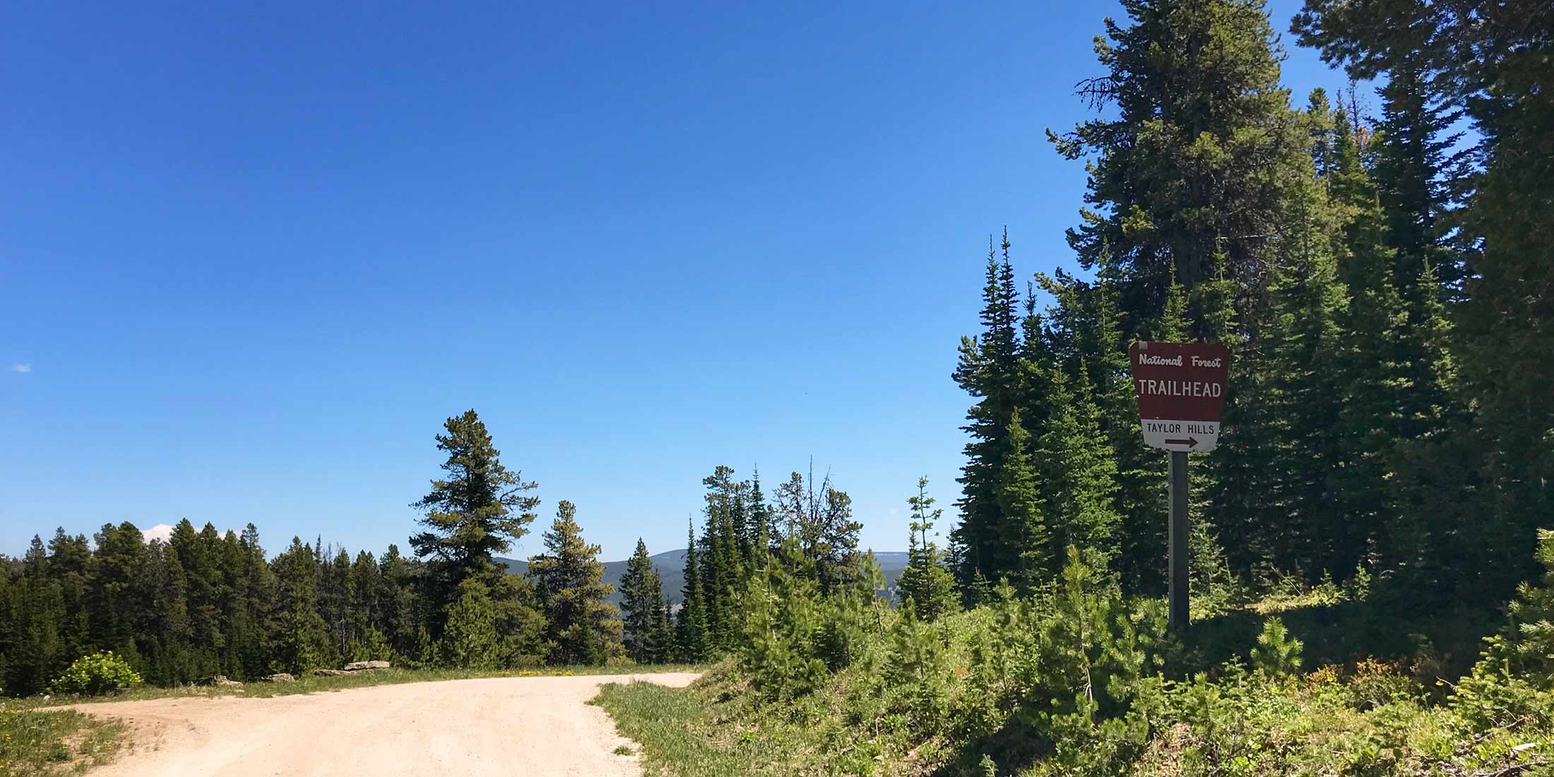 Motorcycle, ATV and Horseback trails located 24.6 miles from Highway 89 on Divide Road in the Little Belt Mountains.