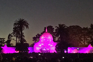 Summer of Love - Conservatory of Flowers lights pink