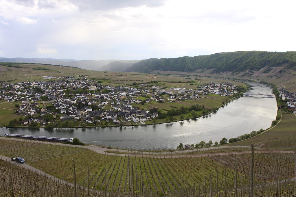 Moselland - Riesling Expert