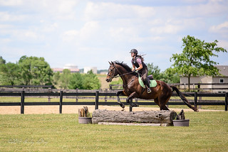 Cross Country Horse Clinic | by shirley319