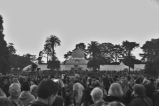 Summer of Love - Conservatory of Flowers bw