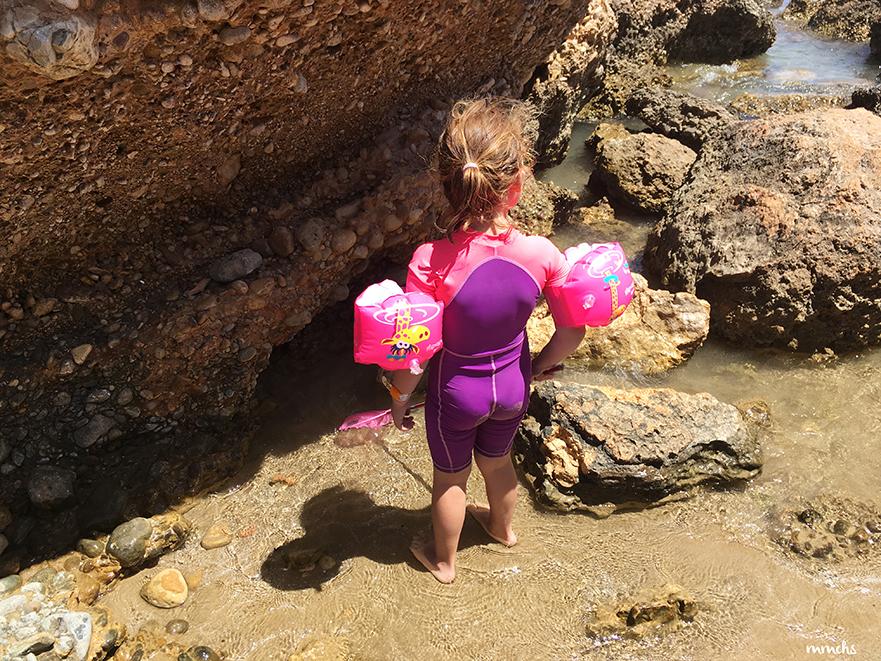 buscando cangrejos en rocas