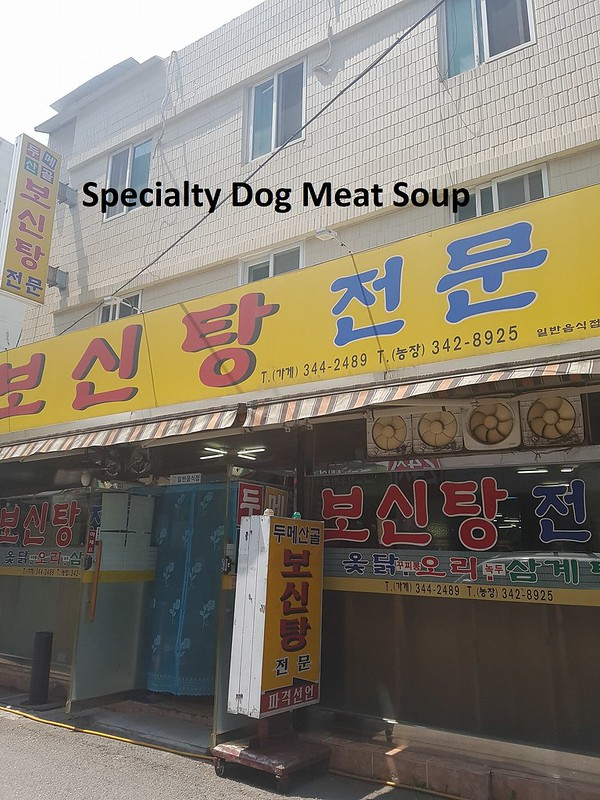 Bucheon dog meat restaurant
