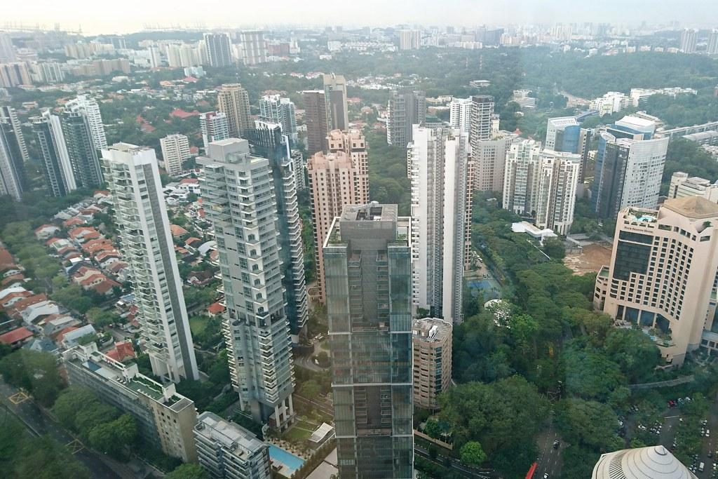 新加坡是高度都市化國家,土地面積小,但在國家政策推動下,綠化覆蓋率達50%。攝影:李育琴。