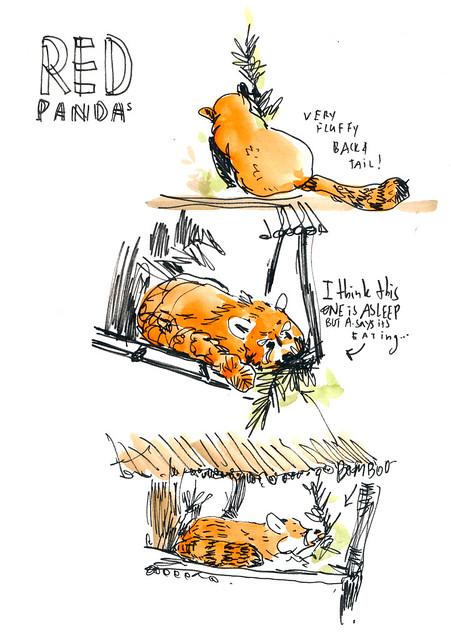 Sketchbook #104: Visit to the Zoo
