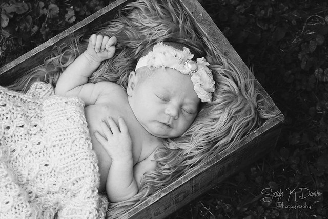 Isabella's Newborn Session