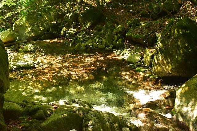 畦ヶ丸 美しい渓流