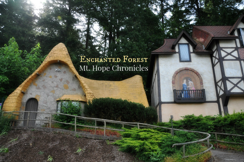 Enchanted Forest (1) @ Mt. Hope Chronicles