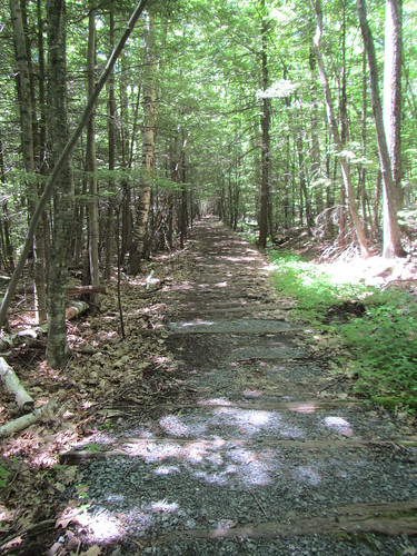 Kaaterskill Rail Trail