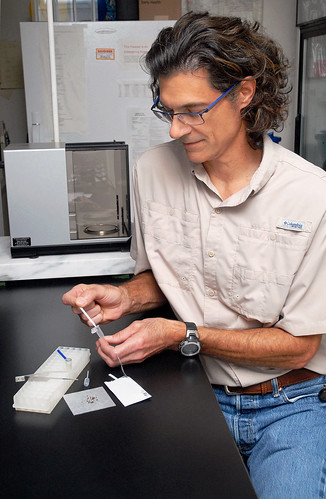 ARS entomologist Steven Valles using a new test for fire ants
