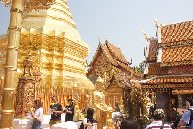 DOI SUHEP 2