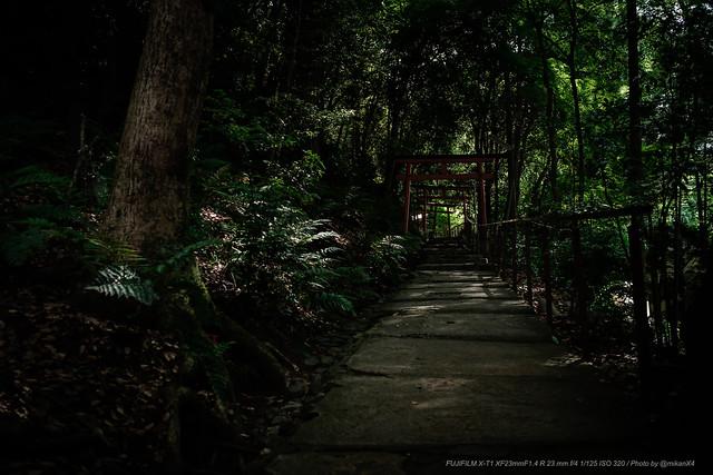 Forest Shirine