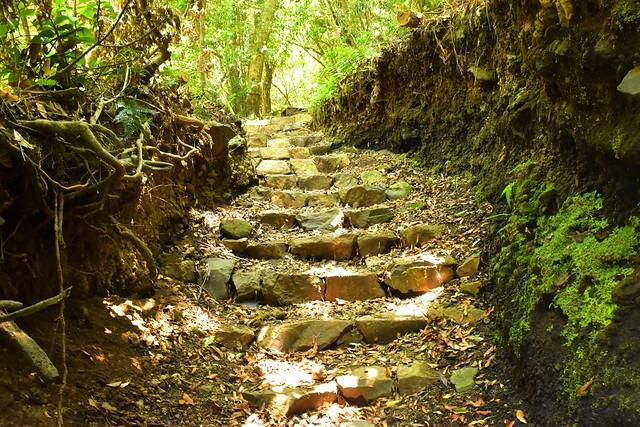 開聞岳登山道 石の階段
