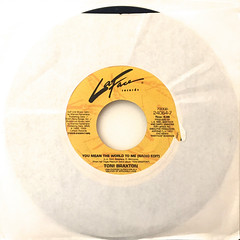 TONI BRAXTON:YOU MEAN THE WORLD TO ME(JACKET A)
