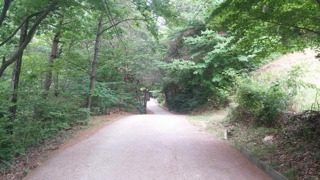 오송폭포 아침 자전거 산책