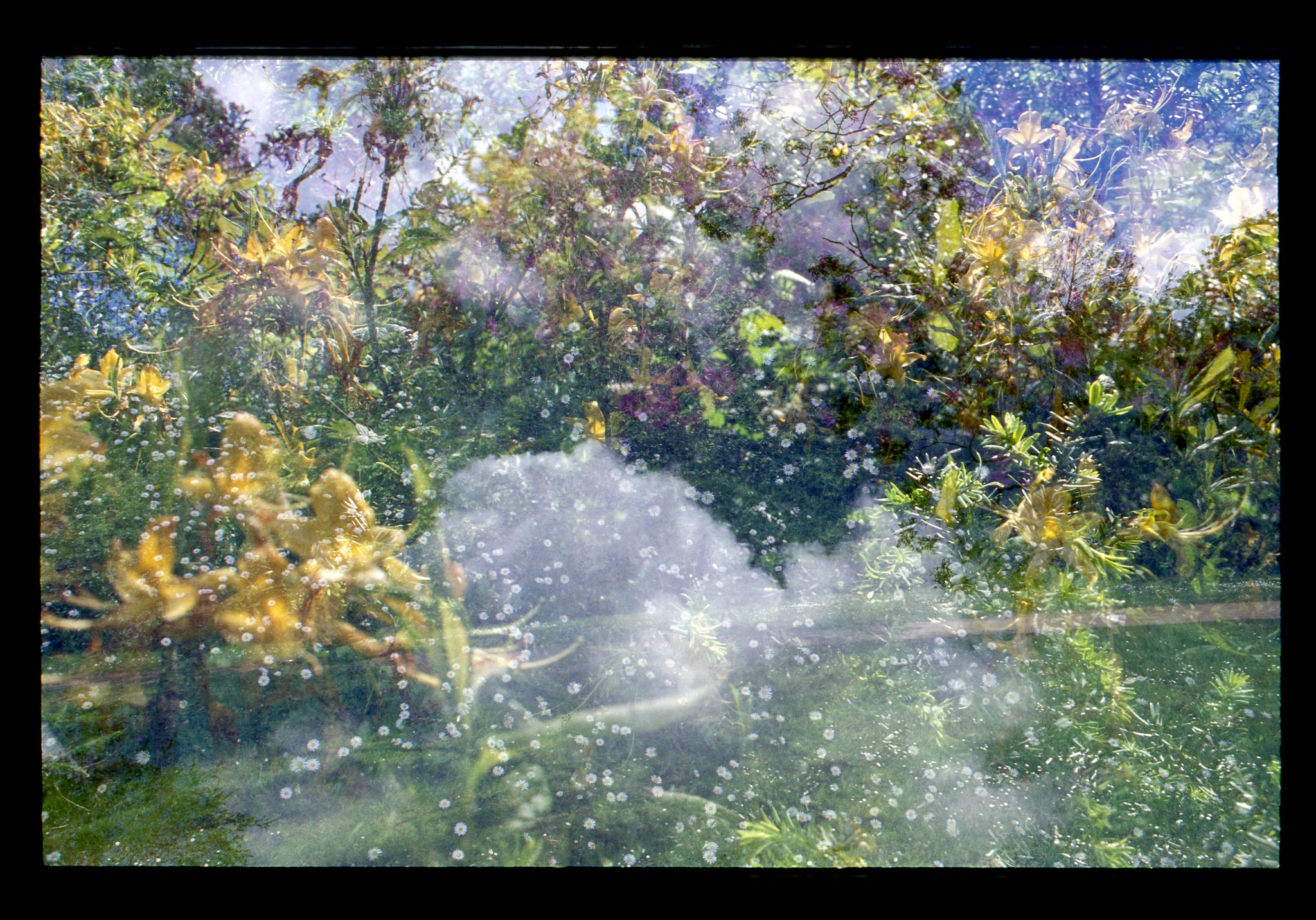 Double Exposure on Color Negative