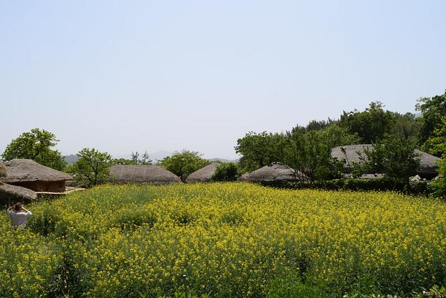 Naganeupseong Folk Village (19)