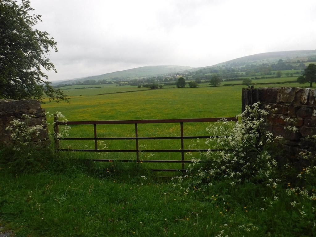 Salterforth to Foulridge 13