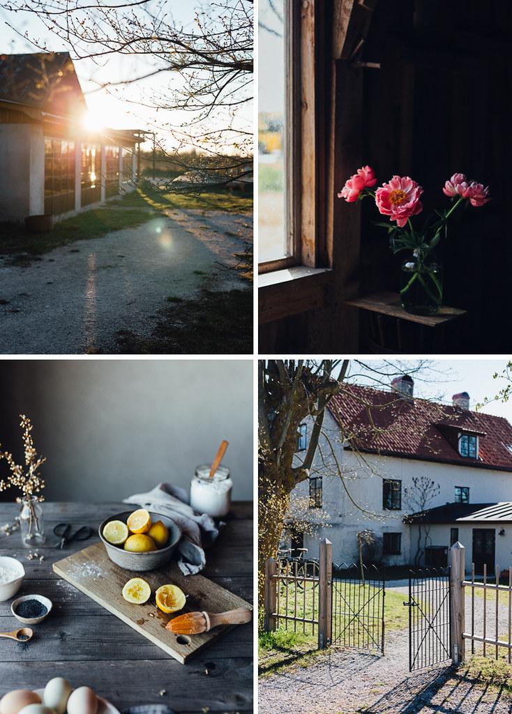 May | Cashew Kitchen