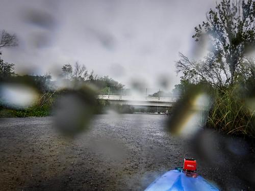 Juniper Springs Creek-152