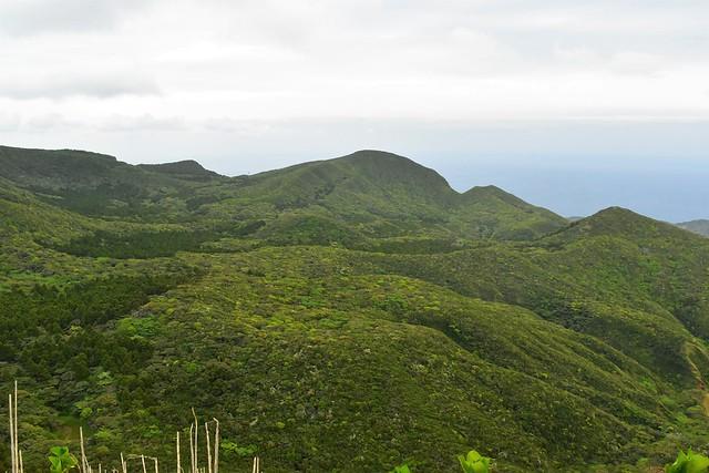 八丈島・三原山の緑豊かなカルデラ