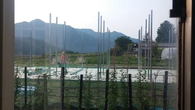 감타래 공장