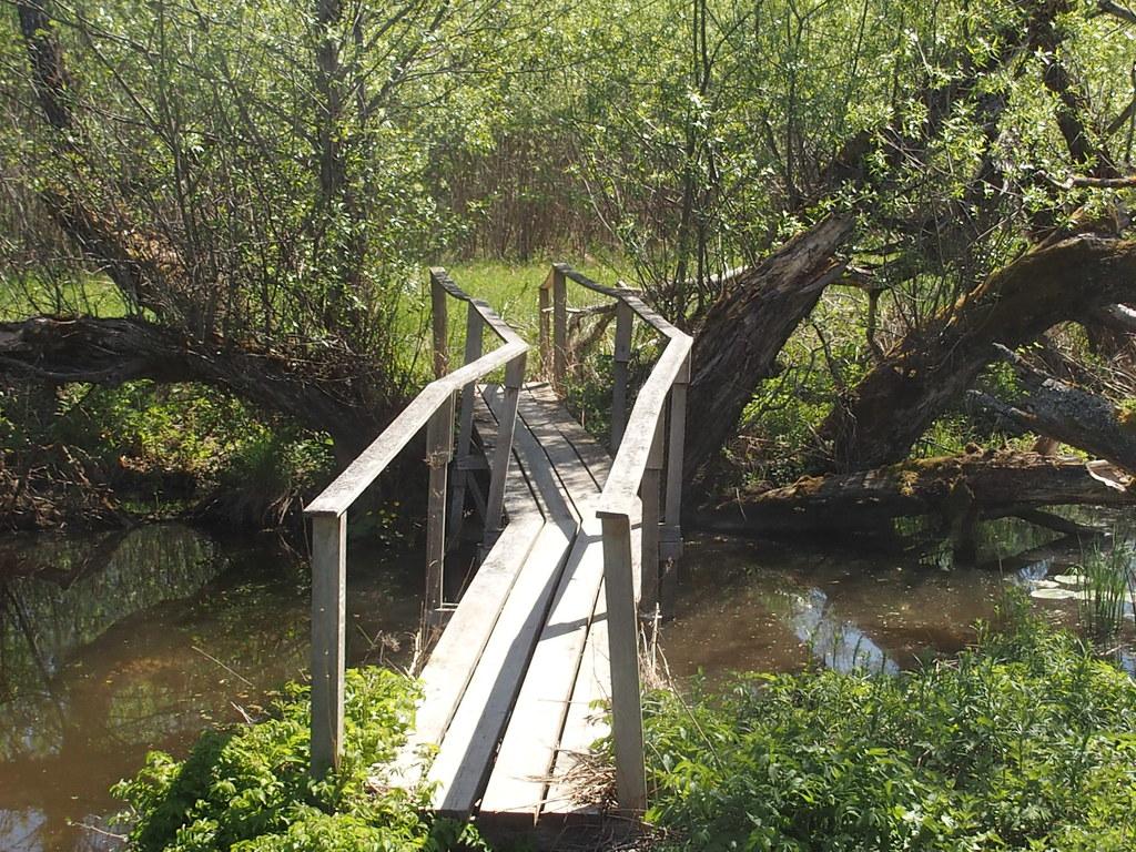Stabil bro