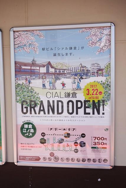 CIAL鎌倉 グランドオープン キービジュアル