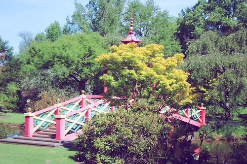 Jardin floral d'Apremont sur Allier (9)