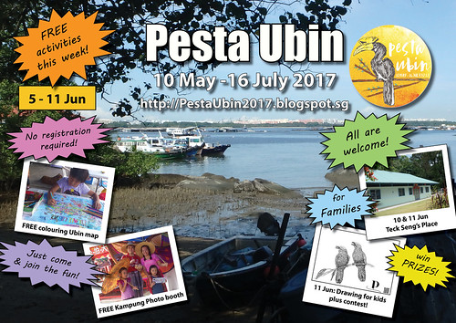 Pesta Ubin 2017 poster: this week 5 - 11 Jun