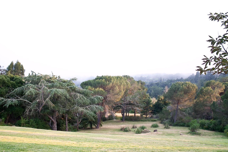 09chaminade-santacruz-travel-landscape