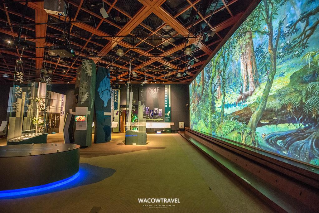 史前博物館-自然史展廳