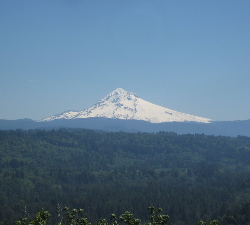 Mount Hood from Bluff Road