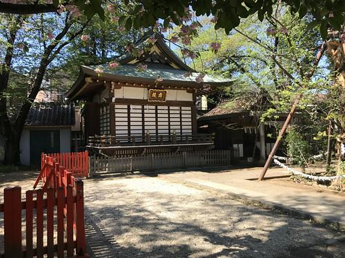 mabashiinarijinja60