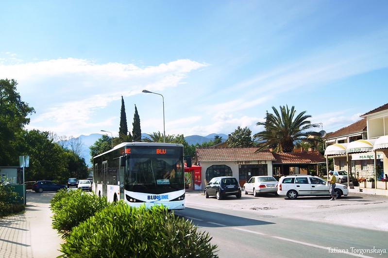"""Автобус """"Blue line"""" подъезжает к тиватской автостанции"""