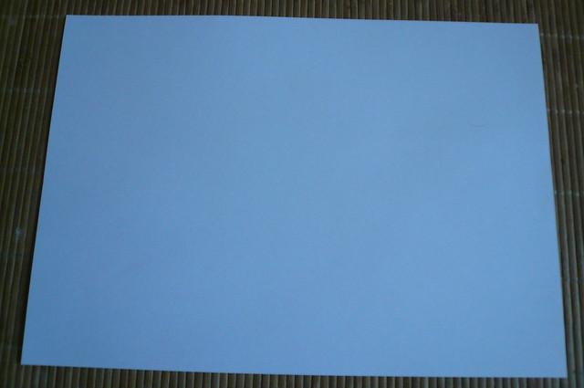P1570619 - Copy