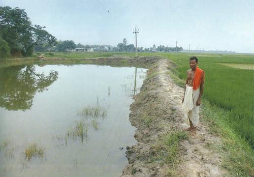 गाँव के पुनर्जीवित तालाब
