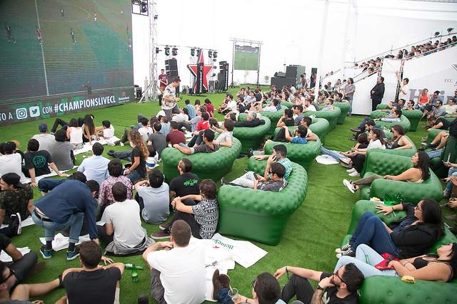 Heineke2