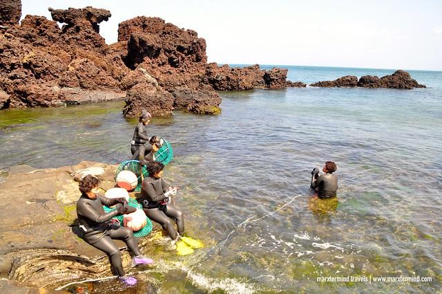 Woman Diver Show in Jeju Island