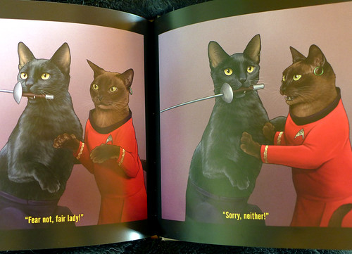 2017-06-14 - Star Trek Cats - 0005 [flickr]