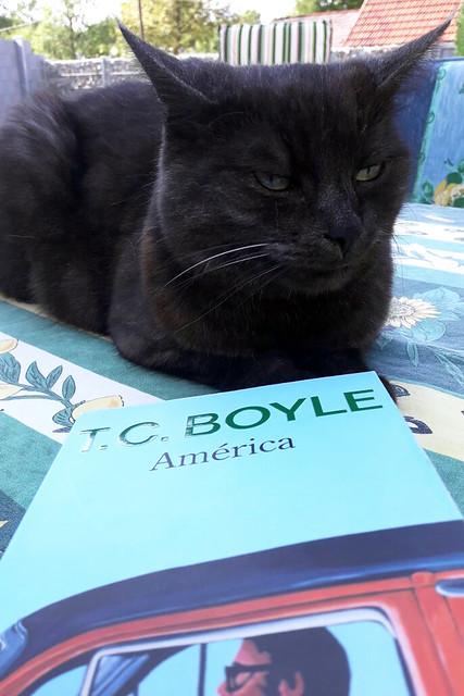 """América"""" von T. C. (Tom Coraghessan) Boyle und Katze Mimette im Garten"""