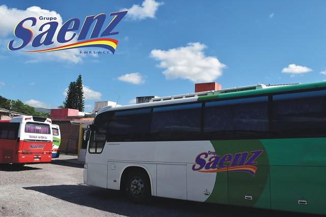 sanezz63