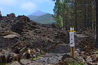Chinyero route, Tenerife | by Snapjacs
