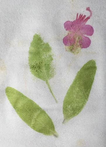 ecoprinting flowers on mordanted t-shirt. Bloemen stempelen op t-shirt, geleerd bij wolop.nl