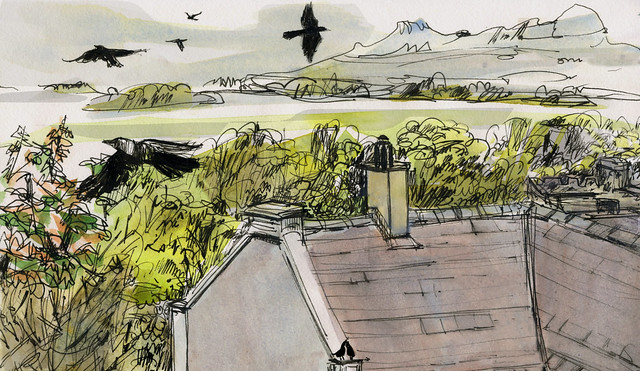 Wales: St Davids, jackdaws and a view of Carn Llidi, seen from my windows